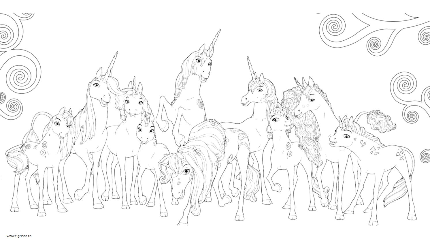 Plansa De Colorat Cu Unicornii Din Mia Si Eu Tigrisorro